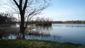 Kraj rybníků